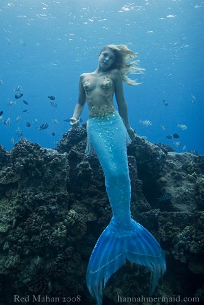 Real Sea Mermaids http://finieramos.blogspot.com/2009/12/real-mermaid-found.html
